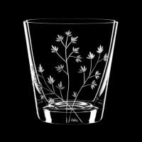 "Whiskey glass set ""Herbs"", 330 ml"