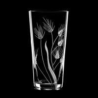 "Water glass set ""Herbs"", 410 ml"